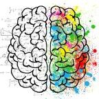 Tres ensayos cortos de divulgación – 2 La neurociencia de la creatividad