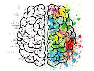 brain-2062057_640