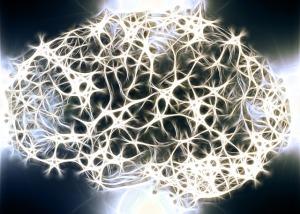 neurons-1739997_640