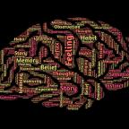 Efectos del sueño sobre la memoria y la generalización